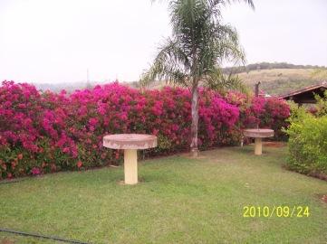 Foto 06. Fazenda Paraizo Primavera.2_JENBicudo enviou
