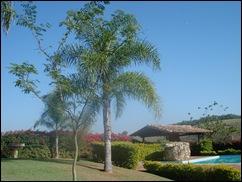 Atual Casa Sede -  Fazenda Paraizo (93)