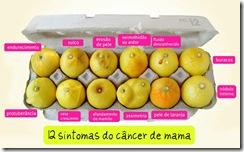 cancer-de-mama1_ilustração dos 12 sintomas